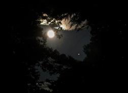 Heart Shaped Moon/Mars