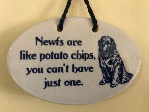 newfs-and-potato-chips