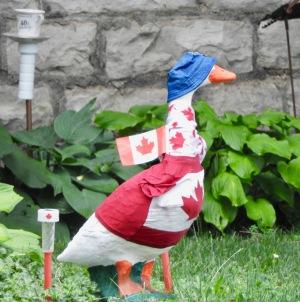 canada-goose-funny-